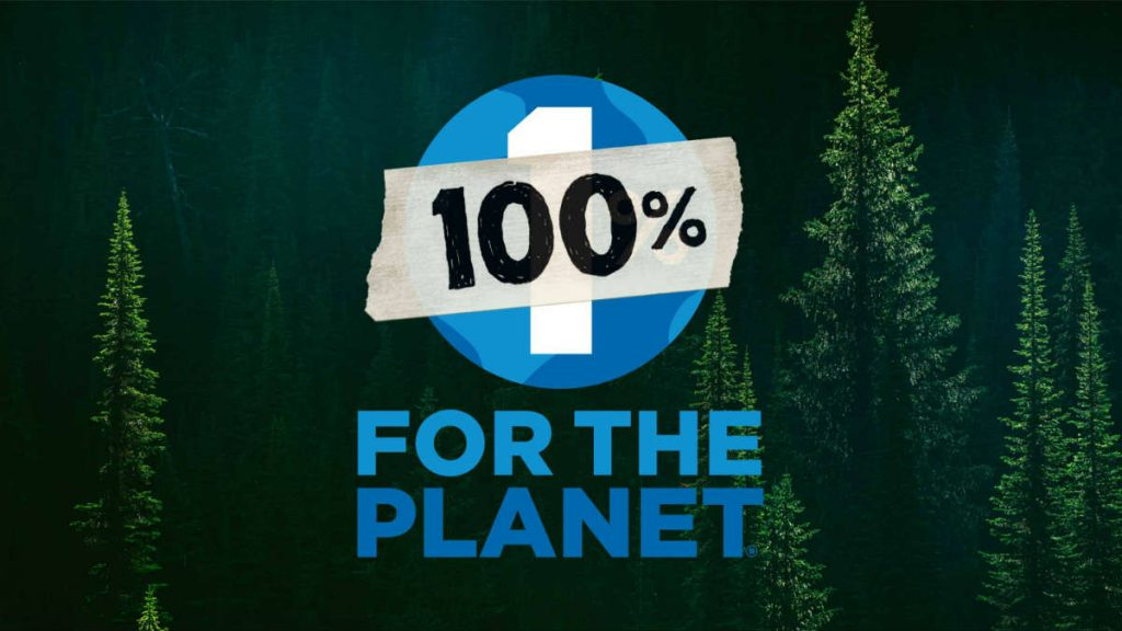 balck friday donation campaign by patagonia